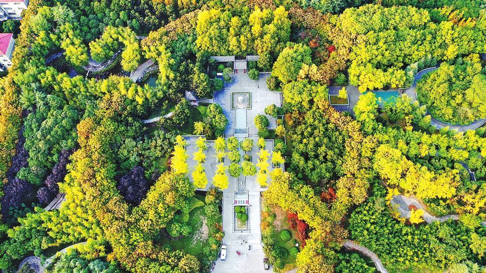 深秋时节,许昌城区五彩斑斓、秋色绚烂(10月19日摄)。近年来,许昌市把生态文明建设贯穿到文明城市创建过程中,用生态绿化构筑宜居宜业的美好环境。来源:河南日报 牛书培摄