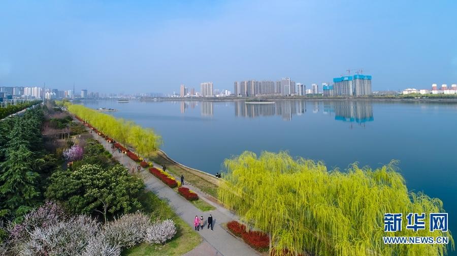 """连日来,南阳市天气晴好,春意浓浓。好天气带来好心情,市民纷纷走出家门到户外活动,享受春光。在白河国家城市湿地公园,碧绿的柳枝在春风的吹拂下,显得格外""""温柔"""",玉兰花在枝头怒放,吸引了不少市民前来赏花游玩、拍照留念。水蓝了,柳绿了,绿色漫上河岸,漫过古朴的城墙,整条河都灵动起来。今年的春色竟来得如此厚重,白河岸畔小草萌绿织成厚重的绿毯。一幅浩大的春景图正徐徐展开,展开在暖融融的春光下,久违的快艇犁开碧波。城中的河道泛起翠绿的波纹,绿化工人在大好春光里植绿,城市管理者疏浚河道。粉墙黛瓦,曲径连廊,小桥水榭,如此和谐地掩映在繁花浓翠中。城区街道的花坛里百花盛开,紫荆花、海棠花、桃花等,一团团、一簇簇,争奇斗艳,让人感受到春天的勃勃生机。新华网发(韩自豪 孙少斌)"""