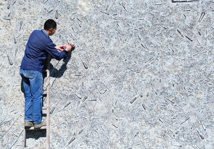 """2020年11月12日,湖北省宣恩县农民汤水平在打磨""""震旦角石""""。湖北省恩施土家族苗族自治州宣恩县农民汤水平历时两年多时间,开采、打磨出一块高3米、宽5.06米、重约11吨的""""震旦角石""""。这块古生物化石上有800多只4亿多年前软体动物形成的化石,经过精雕细琢后集体呈现在一面15米宽的长方形巨石上。""""震旦角石""""又称""""中华角石"""",其中的软体动物生长地质年代在距今约4.4亿至5.1亿年前的奥陶纪,是当时海洋中凶猛的食肉性动物化石。其主要产地在湖北、湖南等地区的奥陶纪地层。王俊 摄"""