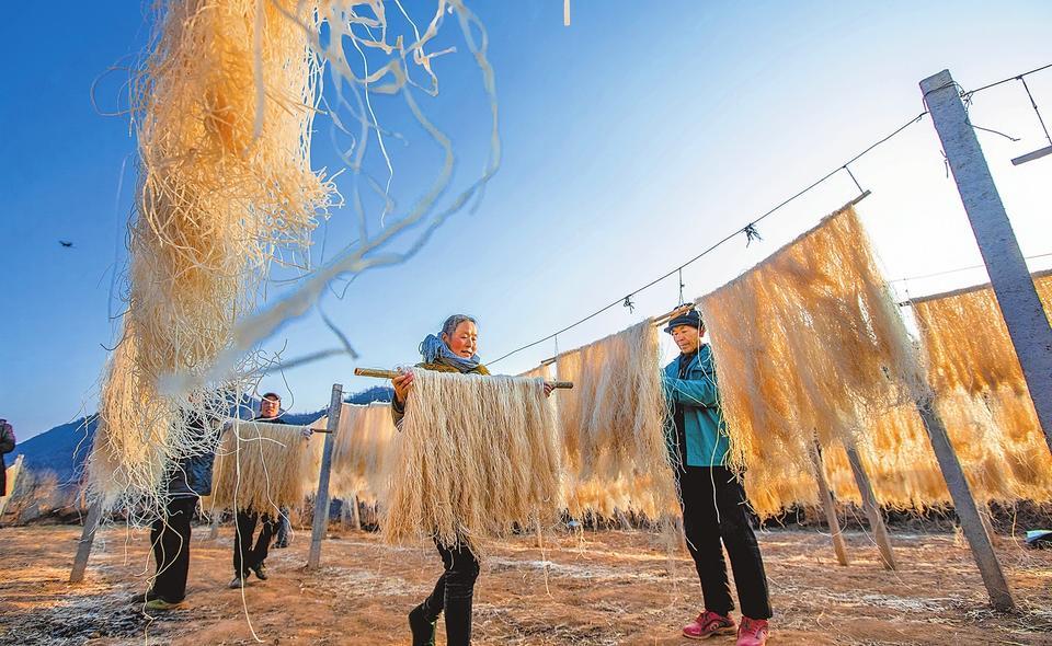 1月5日,在卢氏县范里镇东寨村,当地群众抢抓晴好天气,晾晒粉条。当地的粉条口感爽滑筋道,深受市场青睐,群众通过粉条加工走上致富之路。